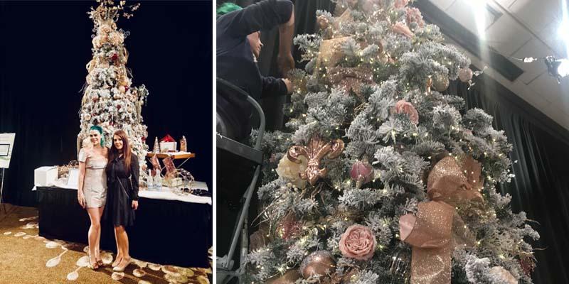 Providence O Christmas Trees